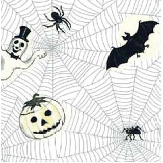 7W455-10 Thermotransferpapier Spider Web
