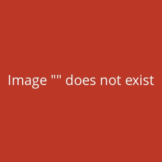 3W135-1 Knee disarticulation Set TITANIUM with 3W035-1